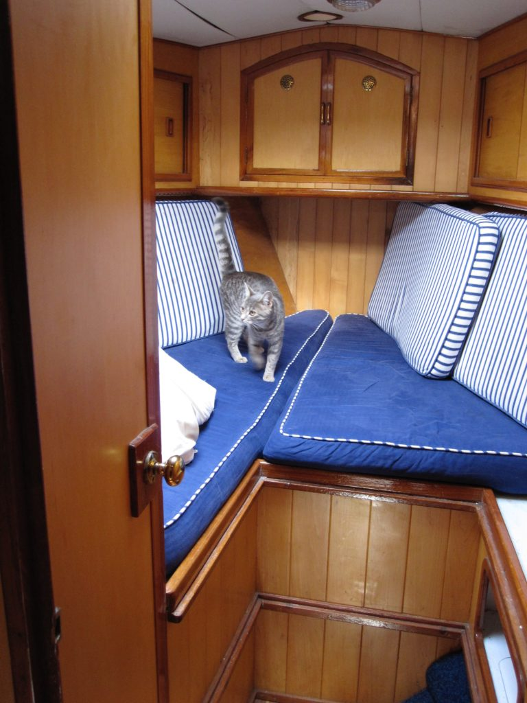 The forepeak back in 2011 (the cat was just visiting) with it's nautical theme - because boats really need that...